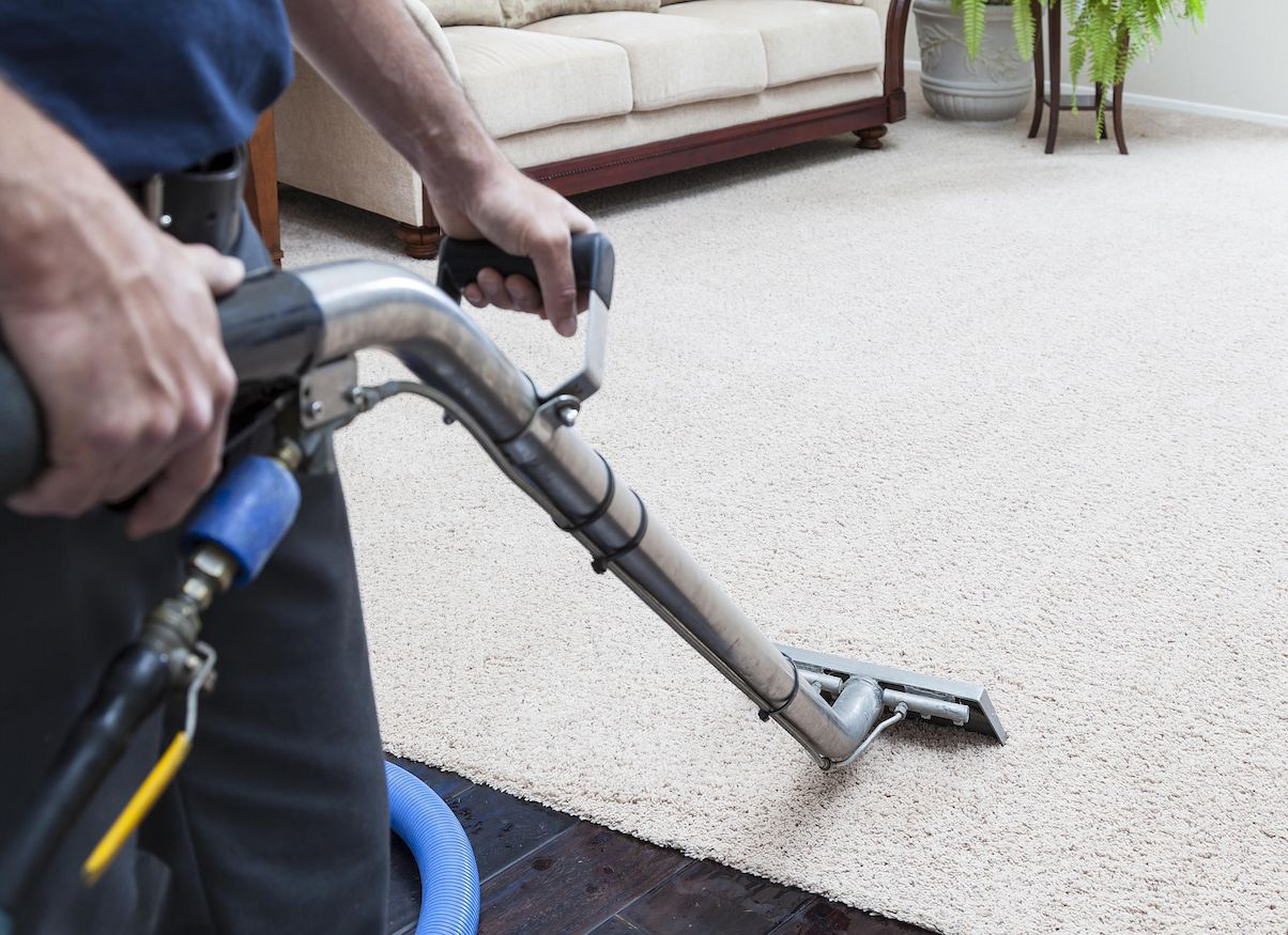 professional-carpet-cleaning-northamptonshire